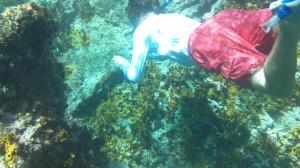 Ryan snorkeling